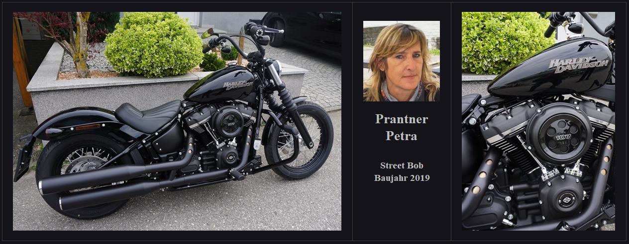 Prantner_Petra_Street_Bob_2019_00