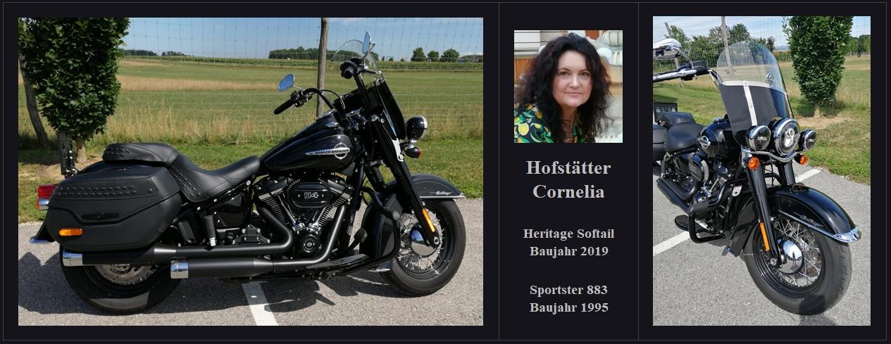 hofstätter_conny_harley_03
